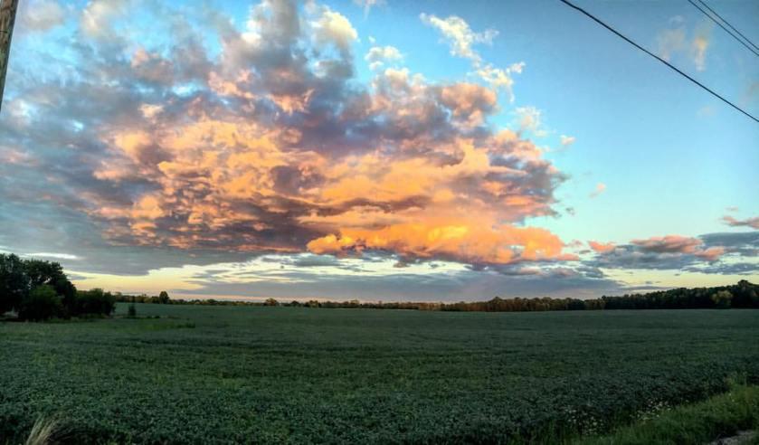wisco sky